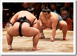 Sumo / Photographer: davidgsteadman (flickr.com)